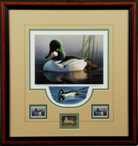 Federal Duck Stamp Print